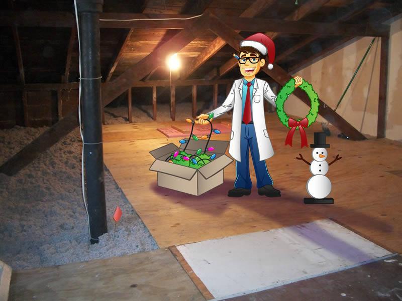 Stan in the attic