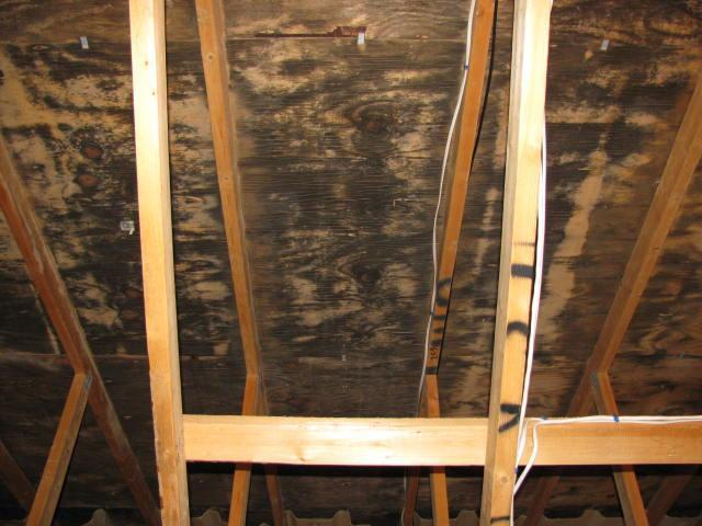 Attic Insulation Attleboro M Save Mold Removal Energy Geeks