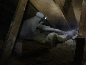 Blowing Cellulose Insulation in the Attic.